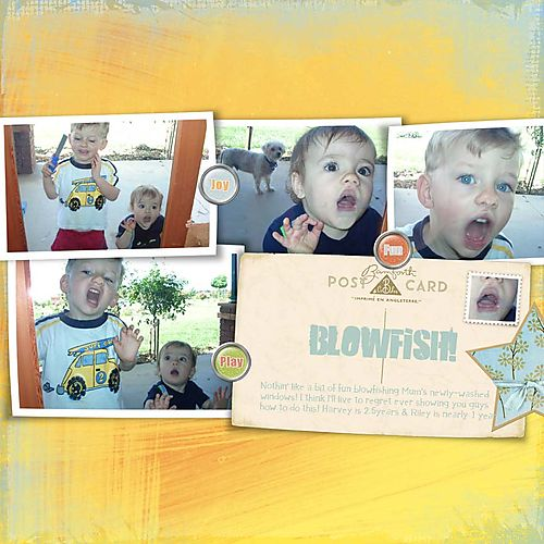 Blowfish 72res